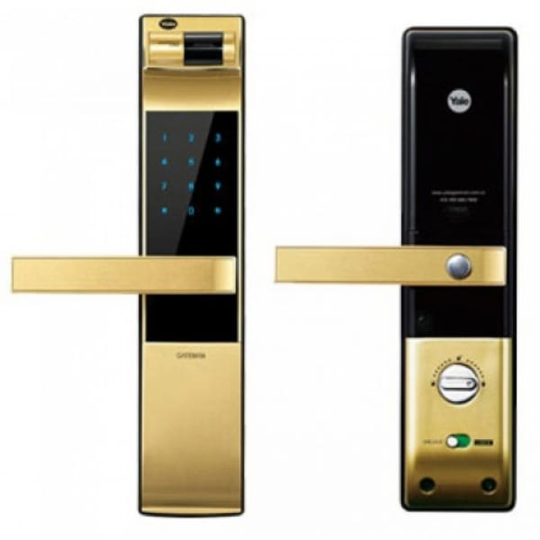 YDM4109 GOLD-2